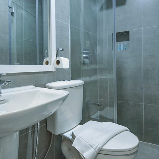 AGB-Executive-bathroom
